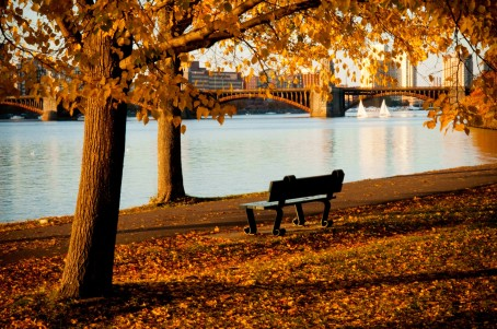 charles-river-in-fall